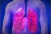 Ditemukan di Paru-paru, Sel Tubuh Ini Meningkatkan Pertahanan Terhadap Virus