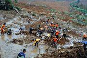 Cegah Longsor, BNPB Minta Masyarakat Tanam Pohon Berakar Kuat