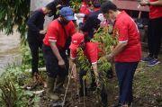 DPC PDIP Depok Tanam Ribuan Pohon Produktif di DAS Ciliwung