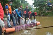 Tanam 1.000 Pohon di Bantaran Ciliwung, PDIP Jaksel Pastikan Cinta Ciliwung Bersih Berkelanjutan