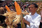Ini Jurus Jokowi Tekan Impor Jutaan Ton Kedelai hingga Jagung
