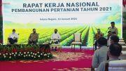 Penuhi Pangan bagi 273 Juta Penduduk Indonesia, Program Food Estate Dipercepat