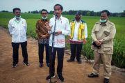 Jokowi Kesal Pangan Masih Impor, Mentan: Kami Minta Petunjuk Bapak