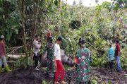Tragis, Gajah Betina Ditemukan Tak Bernyawa di Aceh