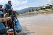 Buktikan Pencemaran Berkurang Drastis, Ridwan Kamil Tebar 2,5 Ton Ikan di Sungai Citarum
