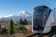 Setiap 8 Tahun Sekali, Jalur Kereta di Jepang Selalu Diserbu Ulat Kaki Seribu