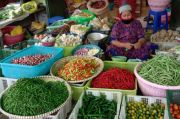 Edan, Harga Cabai Rawit Menggila di Pangkalan Bun Tembus Rp200 ribu Per Kg