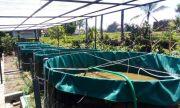 Inovasi UMM-Kemenristek, Gabungkan Solar Cell dan Biona dalam Budidaya Ikan