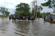 Kalsel Banjir, LAPAN Sebut Luas Hutan Menciut Perkebunan Sawit Melebar