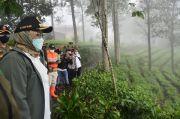 Banjir Bandang Gunung Mas, Ade Yasin Respons Isu Pembalakan Liar di Kawasan Puncak Bogor
