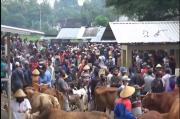 Ancaman Penularan COVID-19 Masih Tinggi, Beredar Video Kerumunan di Pasar Hewan
