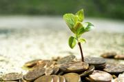 Demi Ekonomi Nasional, Wapres Ajak Masyarakat Wakaf Pakai Uang