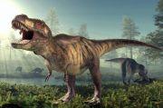 Fosil di Kanada Ungkap Bayi Tyrannosaurus hanya Seukuran Anjing Dewasa