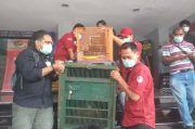 Penangkapan Penjual Satwa Langka, Kementerian KLHK Apresiasi Polda Metro