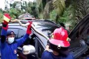Dramatis, Evakuasi Ular King Kobra Dalam Kap Mobil hanya Bermodal Tongkat