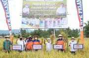 Demi Kesejahteraan Petani, Pupuk Kaltim Siap Perluas Agro Solution