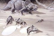 Ilmuwan Sebut Perisai Leher Protoceratops Hasil dari Seleksi Seksual