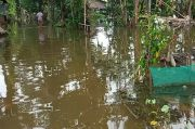 Puluhan Rumah serta Lahan Pertanian di Pangandaran Terendam Banjir