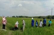 Program Pertanian Sehat di Blora Makin Berkembang