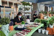 Urban Jungle Bazaar Hadirkan Ragam Tanaman Hias untuk Dekorasi Ruang Tinggal