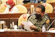 Tak Ingin Benih Lobster Dinikmati Singapura-Vietnam, Menteri Trenggono Siap Cetak Pembudidaya Handal