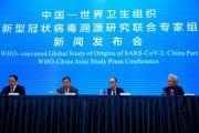 Ketua Tim WHO: COVID-19 Mungkin Mengambil Jalan Berbelit ke Wuhan