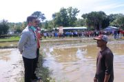 Kunjungi Perbatasan Timor Leste, Mentan Tinjau Persiapan Lumbung Padi Kedua NTT