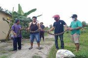 Penampakan Ular Piton yang Meneror Warga Rembang, Berkeliaran Usai Sarang Terendam