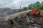 Pemadaman Karhutla, Riau Siagakan 11 Helikopter