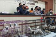 Polda Jatim Ungkap Kasus Penjualan Satwa Dilindungi