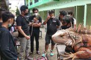 Kontes Reptil Digelar di Maros, Berbagai Komunitas Jadi Peserta