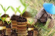 Penguatan Pertanian sebagai Bantalan Ekonomi