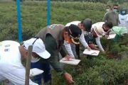 Kolaborasi Perusahaan Migas dan Pemprov Ini, Mampu Menjaga Ketahanan Pangan