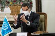 IAEA-Iran Capai Kesepakatan Sementara Soal Verifikasi Fasilitas Nuklir