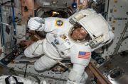 Bayam Makanan Canggih, Bisa Lindungi Astronot dari Radiasi Luar Angkasa