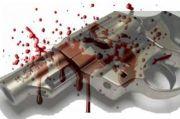 Kasus Oknum Polisi Nembak, Korbannya Mulai Istri, Polisi hingga TNI