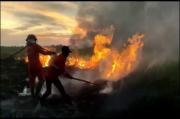 Kobaran Api Melalap Belasan Hektare Lahan di Taman Nasional Rawa Aopa Watumohai