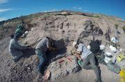 Arkeolog Argentina Temukan Fosil Dinosaurus yang Hidup 140 Juta Tahun Lalu