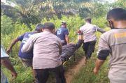 Pesisir Barat Gempar! Anggota TNI AL Terkapar usai Duel dengan Petani Gara-gara Rebutan Lahan Sawit