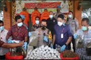 Polisi Sita Uang Rp227 Juta dari Bandar 30 Kg Ganja di Denpasar