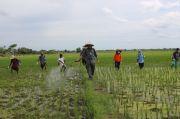 Mentan SYL Gulirkan Bantuan Integrated Farming Berbasis Korporasi di Boyolali