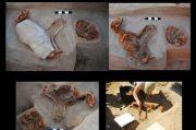 Arkeolog Temukan Pemakaman Hewan Peliharaan Kuno Berusia 2.000 di Mesir