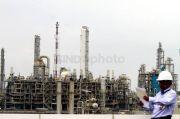 Perusahaan Jepang Ini Minati Investasi Petrokimia di Teluk Bintuni