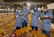 Wujudkan Pentahelix, Sekolah Vokasi IPB University Dirikan Teaching Factory