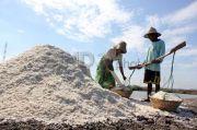 Produksi Garam Capai 361 Ribu Ton, Sakti Bongkar Jurus Petambak Kerek Daya Jual