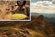 Kiamat Sudah Dekat (3): Sungai Eufrat Mengering dan Gunung Emas Itu Nyata