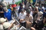 Perdana, Bandara SAMS Balikpapan Buka Jalur Ekspor Kepiting Bakau ke China