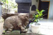Misteri Macan Putih di Candi Mleri dan Silangsengkarut Anak Turunan Ken Arok