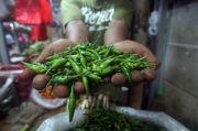 Harga Cabai Rawit Melonjak, Operasi Pasar Perlu Dimasifkan