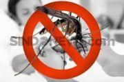 Telat Penanganan, Bocah Blitar Tewas Akibat Serangan Demam Berdarah Dengue